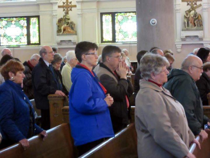 Mob Mass 3